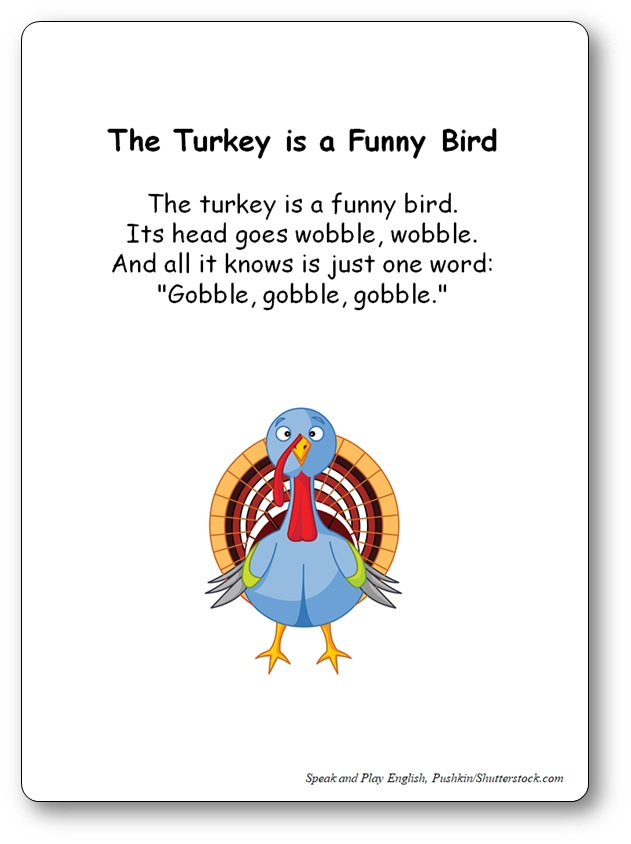 The Turkey Is A Funny Bird Lyrics