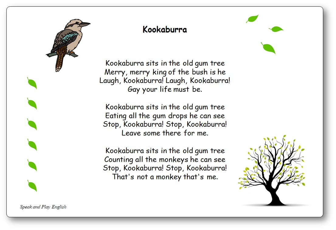 Kookaburra Sits in the Old Gum Tree Lyrics in French