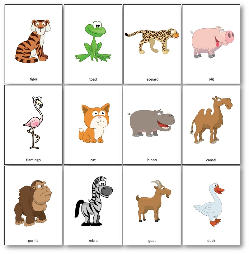 photo relating to Animal Cards Printable titled Hippo Contains a Hat by means of Julia Donaldson: Printable Things to do and