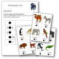 From Head to Toe Animals Pronunciation Literacy Worksheet