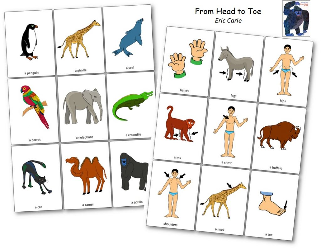 From Head to Toe Picture Cards images activities for toddlers