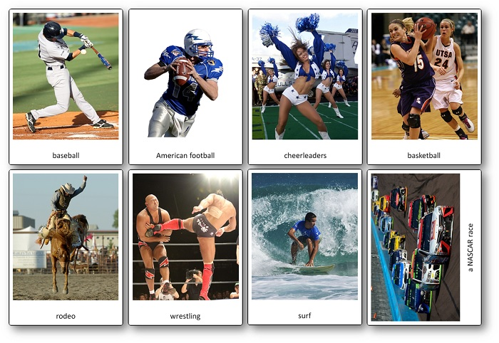 Sports of the United States Picture Cards