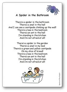 There's a Spider in the Bathroom Lyrics Song